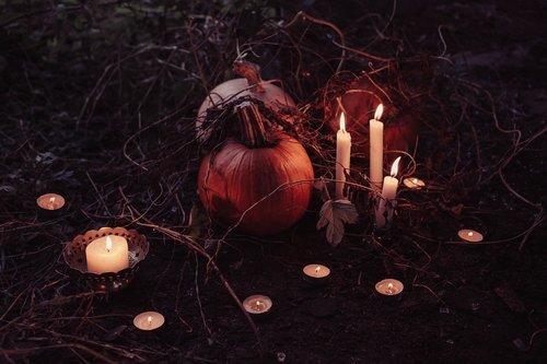 pumpkin-2594747_1920.jpg